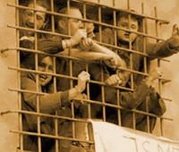 carcerenew